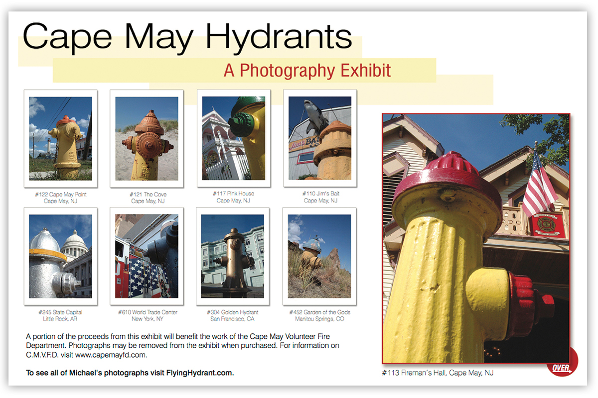 Client Focus: Flying Hydrant - Brochures/Flyers | Branding | Web Design